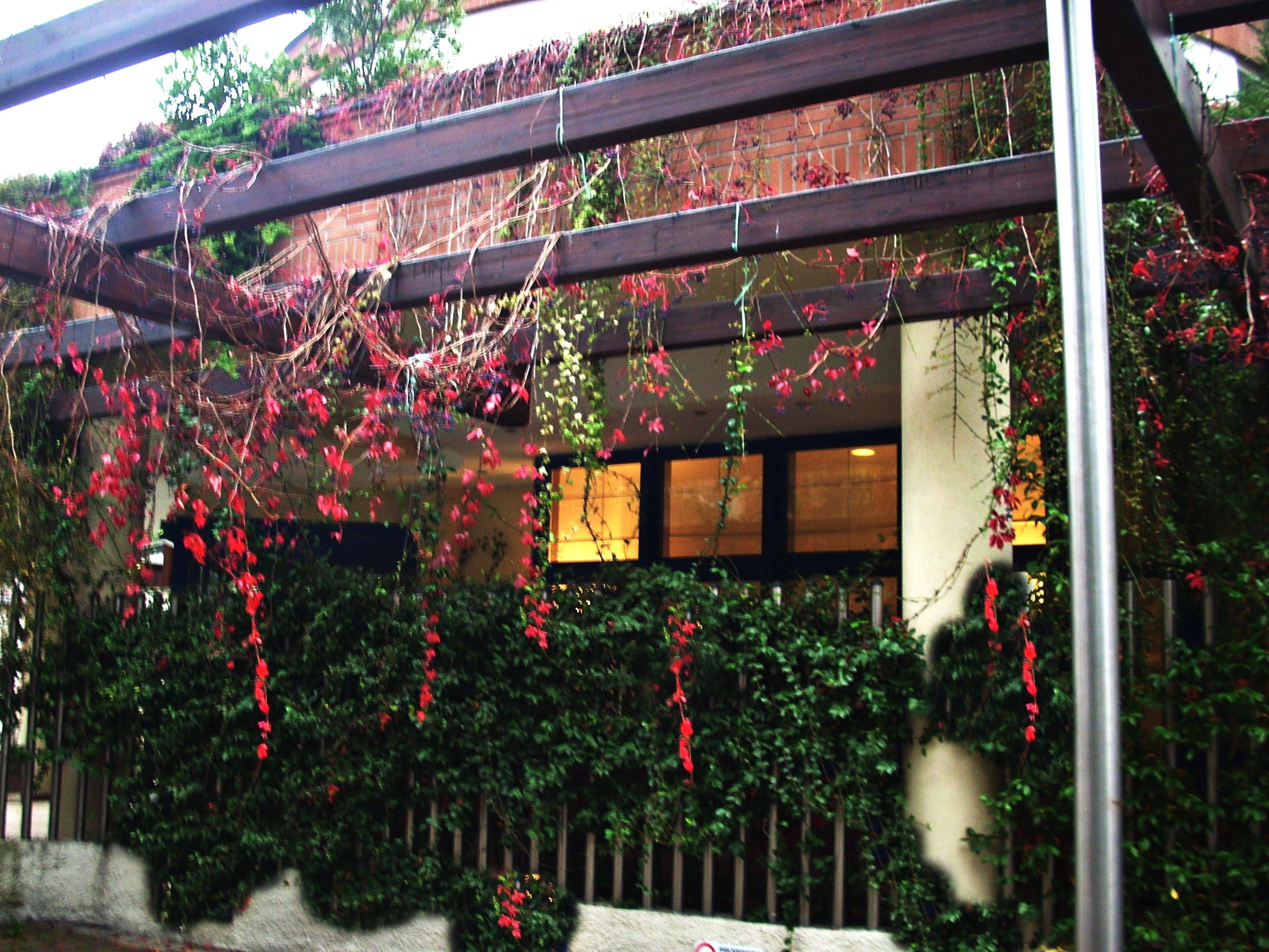 Welcome hotel Legnano , un edificio progettato da me, descrizione 1/10, analisi degli elementi del progetto: panoramica.
